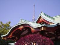 3年間の仕事を終えて主婦 - 泉岳寺から五反田 そして