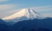 ヤマユラ … 裏高尾の静かさを楽しみました - ヒデさんの山遊び