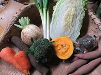2016年最後の野菜セット - まるみど農園のあれこれ日記
