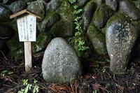 秩父26番札所 万松山円融寺  - 風の彩り-2