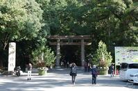 桜井市 近づいて来ましたがあれこれと特にないのです  - ぶらり記録(写真) 奈良・大阪・・・