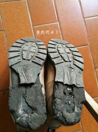 靴、まただよぉ〜 - Tangled with・・・・・