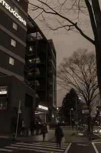 シャンパンゴールドに輝く街 - Film&Gasoline