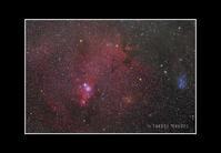 2016年12月29日 いっかくじゅう座コーン星雲(NGC2264)@根尾 - Painter,with nature-Photo