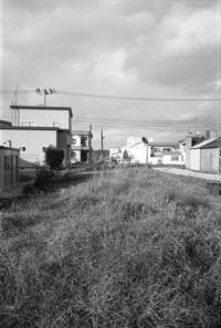 反時計回りご近所サンポ。その3 - 写真日記(薔薇色の人生)