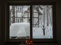 昼間の激しい吹雪・・今年は本当に雪が多いですね! - 十勝・中札内村「森の中の日記」~café&宿カンタベリー~