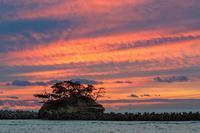 『あの日見た空』 - 嫁と息子と日常のなにげない風景と・・・。