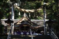 桜井市三輪 ズームイン酉 どうぞよいお年を - ぶらり記録(写真) 奈良・大阪・・・