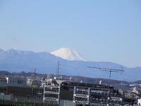 世田谷ぶらぶら日記(2016/12/30)-成城からの富士山(4) - SEのための心理相談室