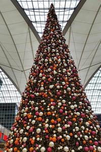 ドイツ旅行 初日 Christmas holidays in Germany [The 1st day: Departure] - PhoTabiLog