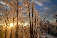 霧氷の日の出  明神岳 - 峰さんの山あるき
