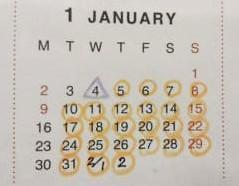 1月のオープンスケジュールと閉店のお知らせ - nagaya shop mitta