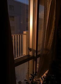 年末の午後 - nshima.blog