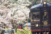2016年振り返り・4月 - 鉄道写真旅物語
