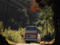堂山 - リンデンバス ~バス停とその先に~