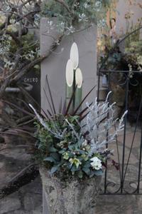 除夜の鐘と門松寄せ植え - CHIROのお庭しごと