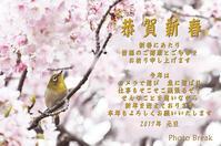 春 - Photo Break