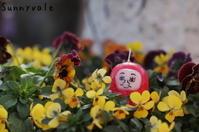 2016年もありがとうございました! - さにべるスタッフblog     -Sunny Day's Garden-