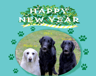 "A Happy New Year!!! - Jasper's Journal ""Sketchbook"" vol, 3"