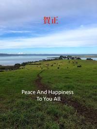 明けましておめでとうございます/ Happy New Year!!! - アメリカからニュージーランドへ