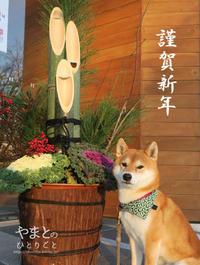 冬休みのアルバム 「謹賀新年」 - yamatoのひとりごと
