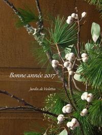 Bonne année!2017' - ~petit* jardin~