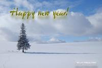 謹賀新年~クリスマスツリーの木と - My favorite ~Diary 3~