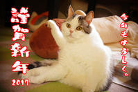 あけましておめでとうございます - ◆◆Daichanpu Blog◆◆