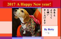 「 謹賀新年 」 - 「せ」の写真集 刹那の光