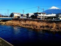 富士の湧水 釣り初め - 弾丸Fisher 花よりライズ