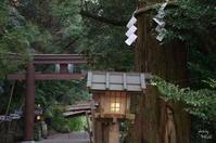 天理市石上神宮 気を引き締めてと思う - ぶらり記録(写真) 奈良・大阪・・・