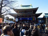 初詣は、乗蓮寺と松月院へ - 子猫の迷い道Ⅱ