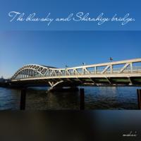 「青い空と白髭橋と初詣」お正月散歩① 2017.1.2 - わたしの写真箱 ..:*:・'°☆