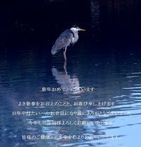 ご挨拶 - The collection of photograph
