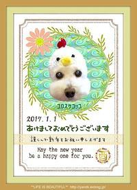 HAPPY NEW YEAR 2017 - *** life is beautiful ***