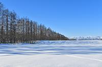 冬の十勝① - Photo Of 北海道大陸