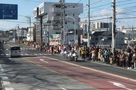 ■ 正月3日は箱根駅伝   17.1.3 - 舞岡公園の自然2