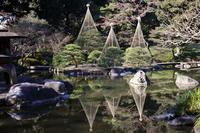 風物詩 - A walk photograph