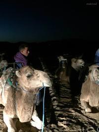 モロッコの旅!⑥(旅行・おでかけ部門) - Dar Makroud