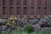 自由が丘~駒沢大学  秋の散歩   - スクンビット総合研究所 - Sukhumvit Research Institute