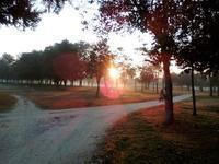 寒季の朝、朝霧の昇るチェンラーイ・ナムコック・ゴルフ場 - チェンマイUpdate