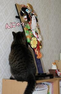 今年もデレデレ(^^ゞ - 長老猫とマミーの徒然日記