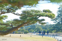 栗林公園 その① - Yuruyuru Photograph