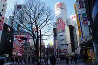 1月5日(木)今日の渋谷109前交差点 - でじたる渋谷NEWS