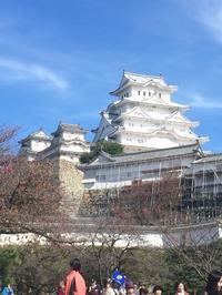 姫路城【とう子 さん】 - あしずり城 本丸