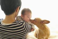 キス写真(写真部門) - 家族の風景
