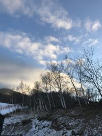 初詣、そして初宴 - 木洩れ日の森から