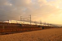 東海道新幹線と富士山 コラボ - ゆうき鉄道撮影記