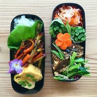 麻婆豆腐茄子BENTO - Feeling Cuisine.com