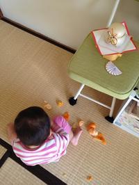 1歳とお正月 - AnimoAnimoヒガ家!